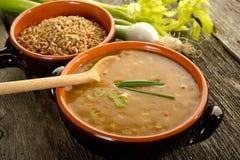 Spelt soup Stock Images