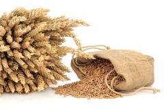 Spelt Wheat Stock Photos