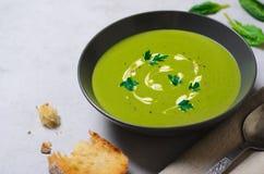 Spenatsoppa i en bunke, bästa sikt, vegetarisk mat, sunt äta Royaltyfri Fotografi
