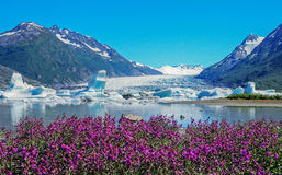 Spencer Glacier Royalty Free Stock Images