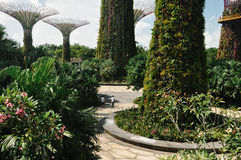 Spendera Tid på trädgården vid fjärden Arkivbild