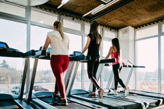 Spending great time at gym. Beautiful young cheerful girls in sportswear exercising on treadmill at gym.  royalty free stock image