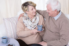 Spending pleasant time together Stock Photo