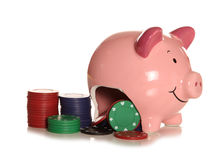 Spending your savings on gambling piggybank. Cutout Stock Photos
