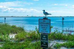 Wonderful Day st the Park. Spent a wonderful day at Cypress Point Park in Tampa Florida stock photos