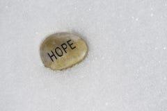 Speranza con l'inverno immagini stock libere da diritti