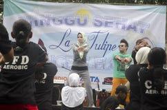 SPERANZA DI VITA DELL'INDONESIA Fotografia Stock