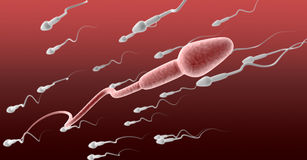 Sperm Cell Female Against The Flow. A microscopic perspective view of a pink sperm cell in the foreground swimming in the opposite direction to a group of white royalty free illustration