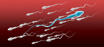 Sperm Cell Male Against The Flow. A microscopic side view of a blue sperm cell in the foreground swimming in the opposite direction to a group of white sperm on Stock Images