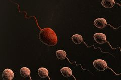 Sperm cells competing Royalty Free Stock Images