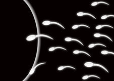 Sperm and egg l. Healthy sperms approaching an ovum Stock Images