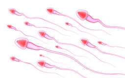 Sperm isolated on white Royalty Free Stock Image