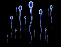 Sperm Race Royalty Free Stock Photos