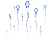 Sperm Race Stock Photo