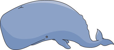 Sperm whale. A cartoon-like illustration of a sperm whale Royalty Free Stock Photo