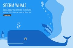 Sperm Whale Vector and Background Info-graphic Design royalty free illustration