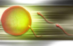 sperma Fotografie Stock