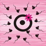 Spermor och ägg vektor illustrationer