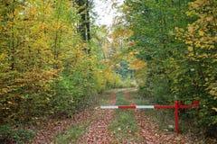 Sperre im Wald stockfotos