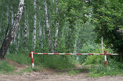 Sperre im Wald Stockfoto