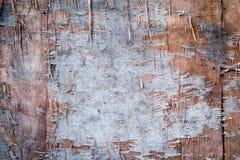 Sperrholzbeschaffenheits-Bretthintergrund Lizenzfreie Stockbilder
