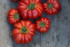 Spese generali dei pomodori rossi luminosi del manzo su superficie di legno pallida Fotografie Stock Libere da Diritti
