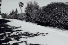 Spetsig väg Arkivbilder