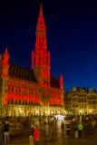 Spettacolo di luci a Bruxelles Fotografia Stock
