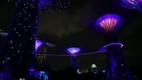 Spettacolo di luci di Supertree video d archivio