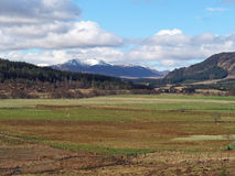 Spey valley, west of Laggan, Scotland in spring Royalty Free Stock Photos