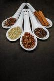 Spezia cinque con il fuoco dei granelli di pepe di Szechuan Fotografie Stock