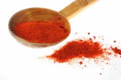Spezia del pepe rosso Fotografia Stock