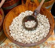 Spezia dell'aglio Immagini Stock