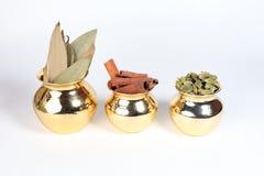 Spezia della foglia di alloro della cannella del cardamomo in vaso brillante del metallo Fotografia Stock Libera da Diritti
