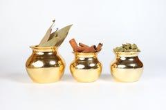 Spezia della foglia di alloro della cannella del cardamomo in vaso brillante del metallo Immagine Stock Libera da Diritti