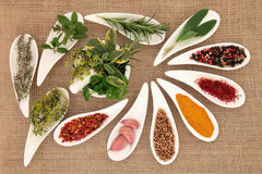 Spezia e Herb Seasoning Fotografia Stock Libera da Diritti