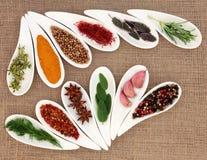Spezia e Herb Seasoning Fotografia Stock