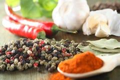 Spezia e peperoncino rosso sul cucchiaio Immagine Stock