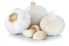 Spezia sana dei chiodi di garofano del chiodo di garofano di aglio isolata su bianco Immagine Stock