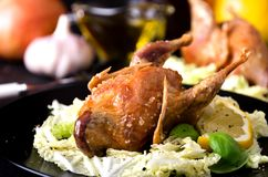 Spezie al forno del sale dell'insalata del gioco della quaglia Immagini Stock