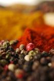 Spezie aromatiche Fotografia Stock