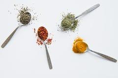 Spezie aromatiche assortite in cucchiai del metallo isolati su bianco Fotografie Stock