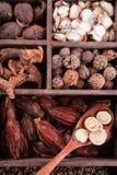 Spezie autentiche di cinese della raccolta Immagine Stock Libera da Diritti