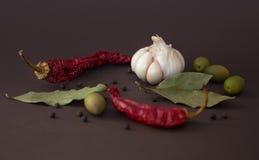 Spezie calde per alimento Fotografie Stock