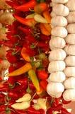 Spezie che appendono nelle righe Fotografie Stock