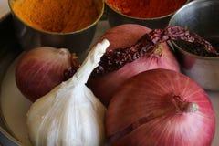 Spezie, cipolle ed aglio, elementi essenziali per sapore fotografia stock