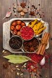 Spezie, condimento e piccante Fotografia Stock