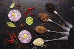 Spezie in cucchiai, coriandolo, semi di sesamo, seme di lino, granelli di pepe su un fondo scuro Fette di cipolla rossa e di calc immagini stock libere da diritti