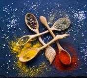 Spezie in cucchiai di legno Immagine Stock