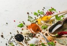Spezie in cucchiai differenti su un fondo bianco di pietra Uno scattering delle spezie Immagini Stock Libere da Diritti
